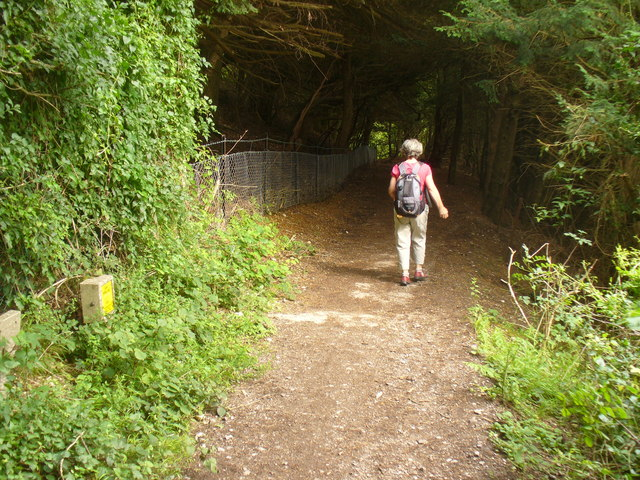 Descent on the North Downs Way
