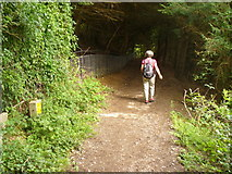 TQ2352 : Descent on the North Downs Way by Colin Smith