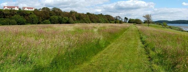 Brucehill Cliffs and Havoc Grassland