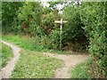 SE4516 : Signpost at the footpath junction by Christine Johnstone