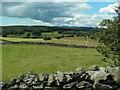 SD3883 : Dry stone walls near Ayside by Raymond Knapman