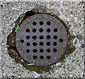 J3371 : Drain cover, Belfast by Rossographer