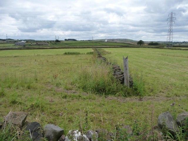 Drystone wall field boundary, south of Tewitt Lane.