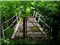 NY8112 : Footbridge over River Belah at Field Head by John Darch