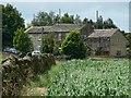 SE0835 : Old Allen House by Christine Johnstone