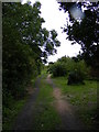 TM4466 : Footpath to Onners Lane by Adrian Cable