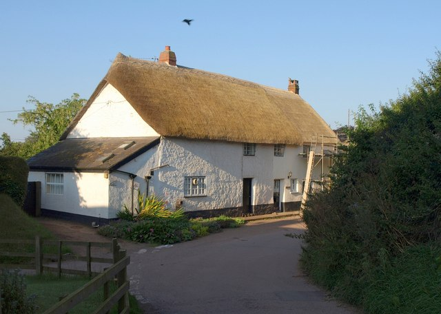 Thatched cottages, Whitnage