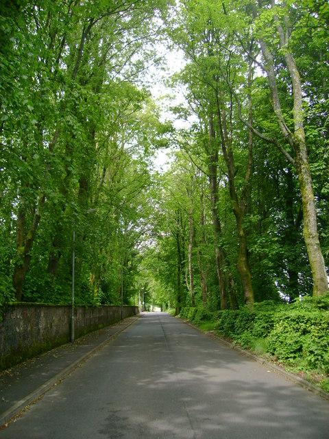 Dipple Road