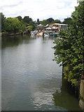TQ1672 : Newman's Boatyard on Swan Island, Strawberry Hill by Rod Allday