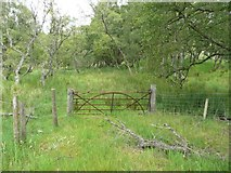 NN6795 : Gate to a marsh by Russel Wills