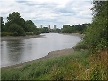 TQ1776 : The River Thames alongside Syon Park by Rod Allday