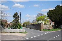 TQ8115 : Cottage Lane by N Chadwick