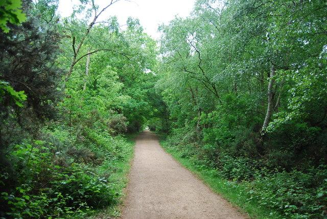 Capital Ring, Putney Heath
