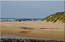 SS2006 : Bude : Sandy Beach & Dunes by Lewis Clarke