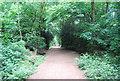 TQ2272 : Capital Ring, Wimbledon Common by N Chadwick