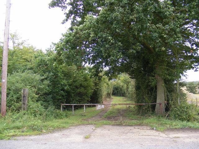 Field entrance off Abbey Lane (U2418)