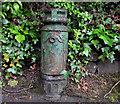 J3470 : Old lamppost, Belfast by Albert Bridge