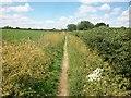 SU9096 : Footpath to Hogg Lane by michael
