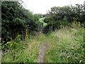 SJ8956 : Looking back to the fields by Jonathan Kington