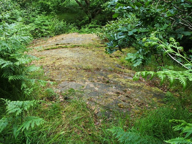 Cup-marked boulder