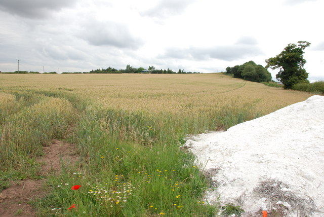A Field Of Wheat, Walsall Rd, Pipehill