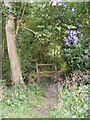 TM4365 : Footpath to Moat Road & Pretty Road by Adrian Cable