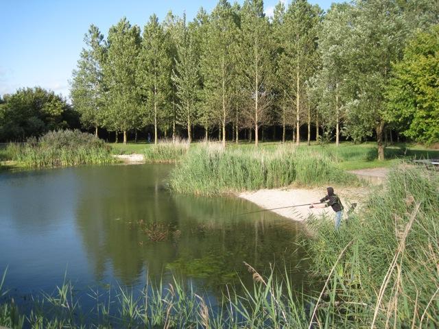 Landscaped pool, Gazeley Park