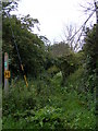 TM4266 : Wash Lane footpath to Packway Farm by Adrian Cable