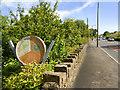 SD6919 : Bolton Road, Grainings Wood by David Dixon