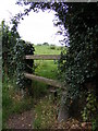 TM4160 : Footpath to the B1069 Snape Road by Adrian Cable