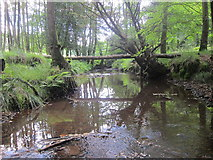 TQ4532 : Stream through The Park by Oast House Archive