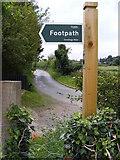 TM4160 : Grove Road & Sandlings Walk Footpath sign by Geographer
