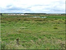 NZ2796 : Druridge Bay Nature Reserve by Oliver Dixon