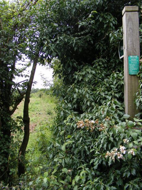 Footpath to Friston Moor & Church Road