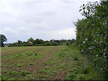 TM4160 : Footpath to Friston Moor & Church Road by Geographer