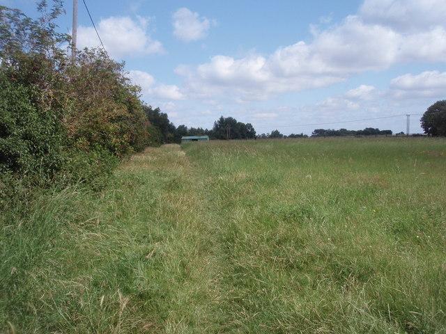 Footpath into Fodder Fen