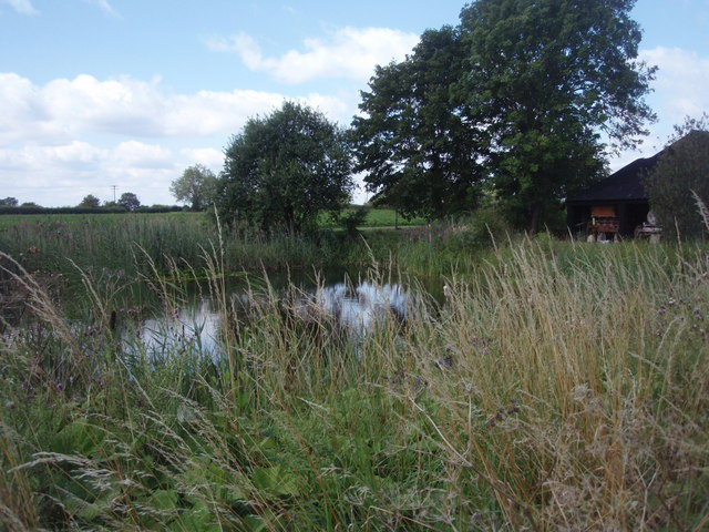 Pond at Spinney Abbey