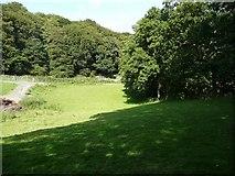 SE0026 : Hebden Royd Footpath 19 near Broad Bottom, Mytholmroyd by Humphrey Bolton