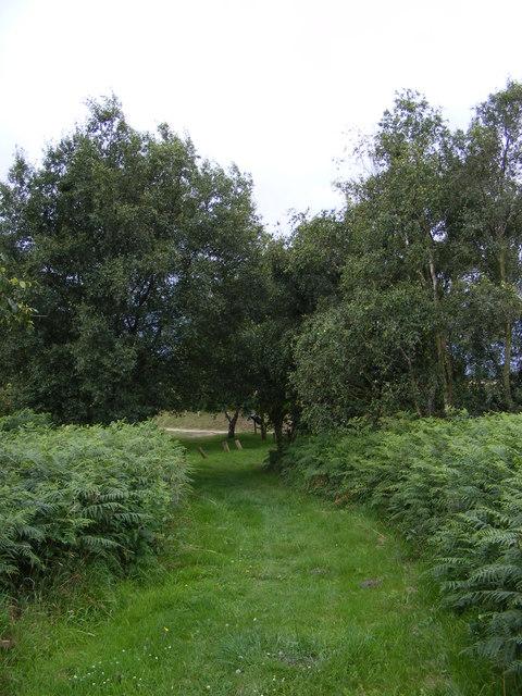 Sailors Path footpath to  A1094 Aldeburgh Road