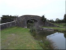 N6231 : Downshire Bridge on the Grand Canal near Edenderry, Co. Offaly by JP