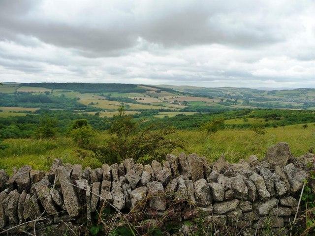 Roadside dry stone wall