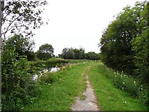 N6031 : Grand Canal in Rathmore near Edenderry, Co. Offaly by JP