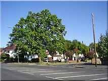 SP4974 : Rugby-Westfield Road by Ian Rob