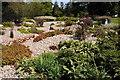 SP9632 : Bog garden, Woburn Abbey by Philip Halling