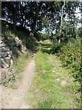 SE0026 : Hebden Royd Footpath 19 at Broad Bottom, Mytholmroyd by Humphrey Bolton