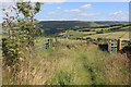 SD9706 : Quarry Lane, near High Moor by Michael Fox
