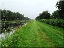 N4929 : Grand Canal in Gorteen, Co. Offaly by JP