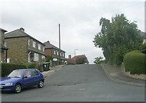 SE1537 : Low Ash Drive - Low Ash Avenue by Betty Longbottom