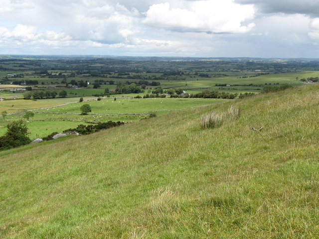 Sheep pastures below Carnbane East