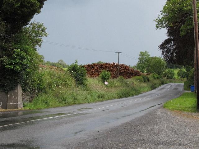 Lumber stockpile at Loughcrew